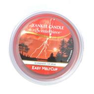 Meltcup SUMMER STORM Yankee Candle