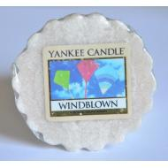 Tartelette de cire parfumée WINDBLOWN Yankee Candle wax tart exclu US USA