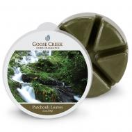 Cire parfumée PATCHOULI LEAVES Goose Creek Candle