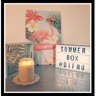 SUMMER BOX  Format Mini - Box de l'été - Difmu Boxatem