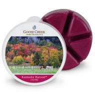 Cire parfumée KENTUCKY HARVEST Goose Creek Candle